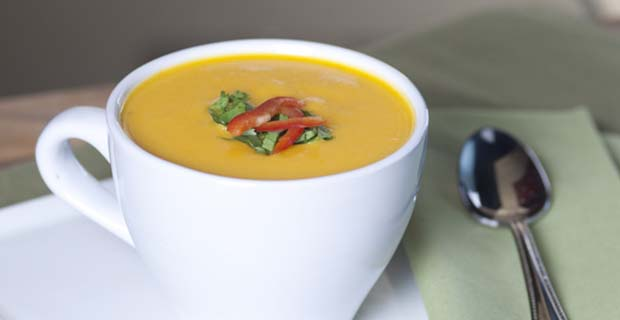 Butternut Squash Blender Soup
